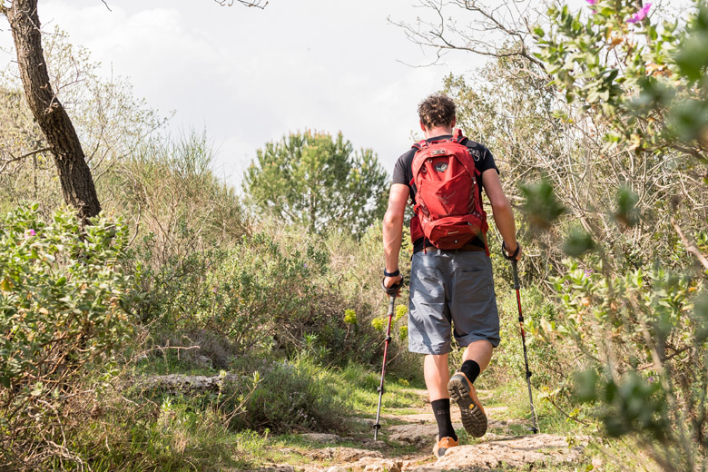 Ticks are less common on paths than in wild grass.