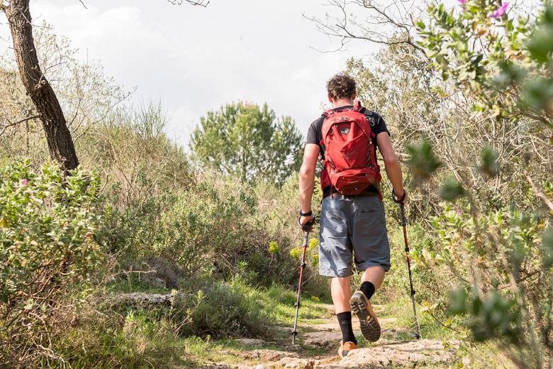 Teken komen minder voor op paden dan in het wilde gras.
