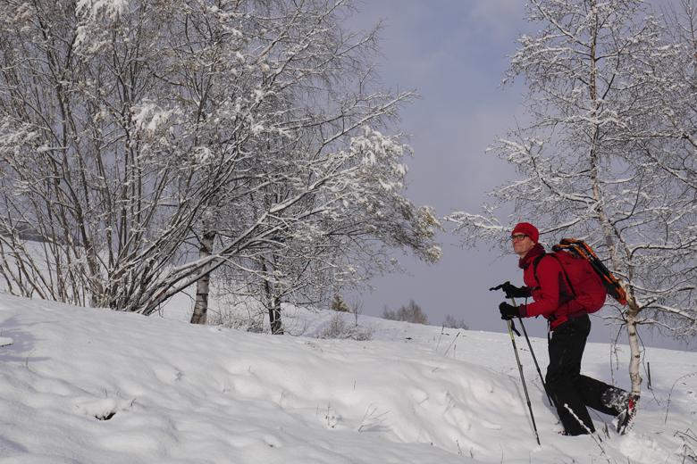 De The North Face Verto S4K GTX bergschoenen zijn prima voor in de sneeuw.