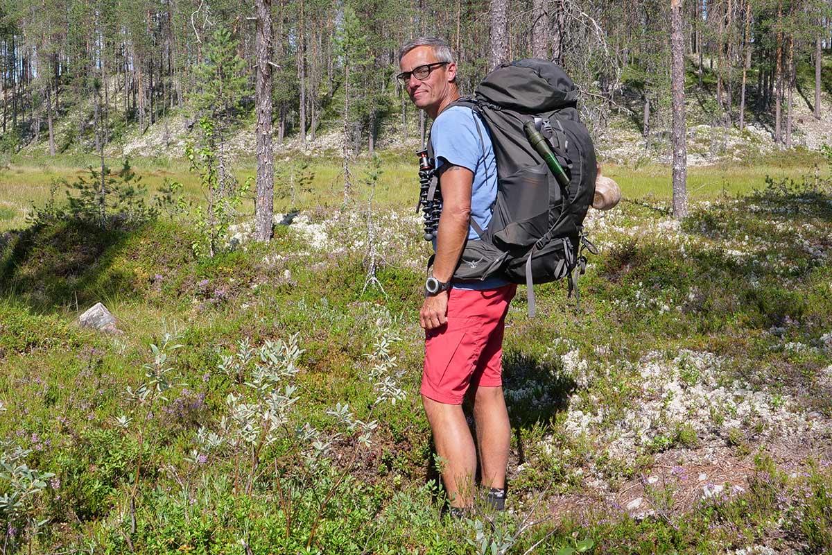 Picholine Green All Sizes Osprey Kestrel 38 Mens Rucksack Hiking