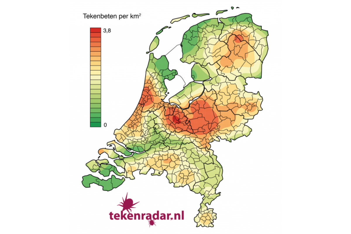 The notifications via tekenradar.nl show the geographical differences in the number of tick bites per km2. (source tekenradar.nl)