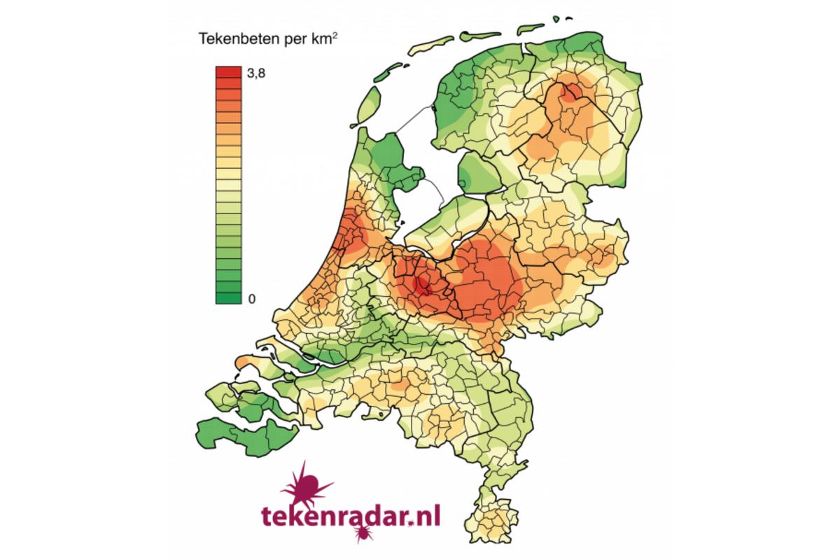 De meldingen via Tekenradar.nl tonen de geografische verschillen zien van het aantal tekenbeten per km2. (bron tekenradar.nl)